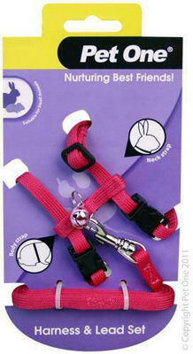 Picture of Small Animal Harness Purple